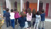 Visita ao Canil de Penafiel